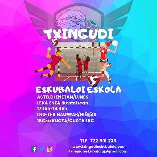 Txingudi Eskubaloi Eskola